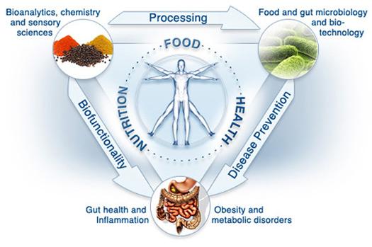 Functional-Medicine